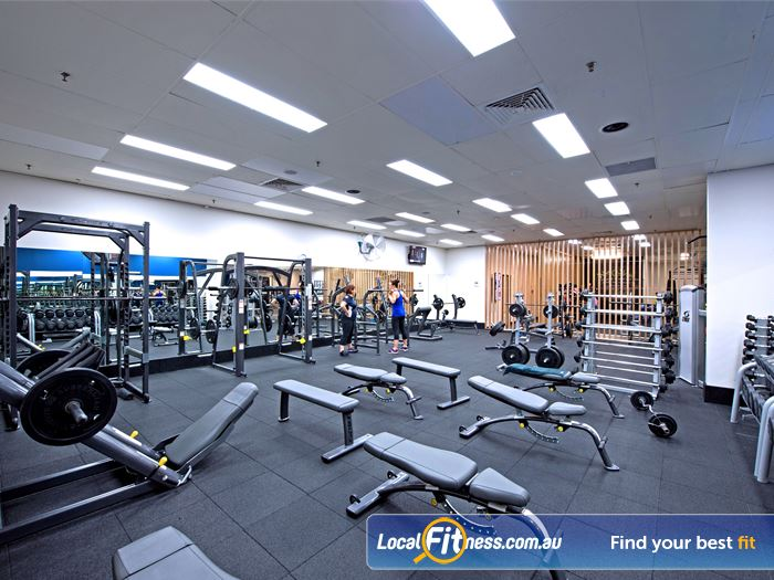 Goodlife Health Clubs Gym Leederville  | The fully equipped Cottesloe free-weights gym area.