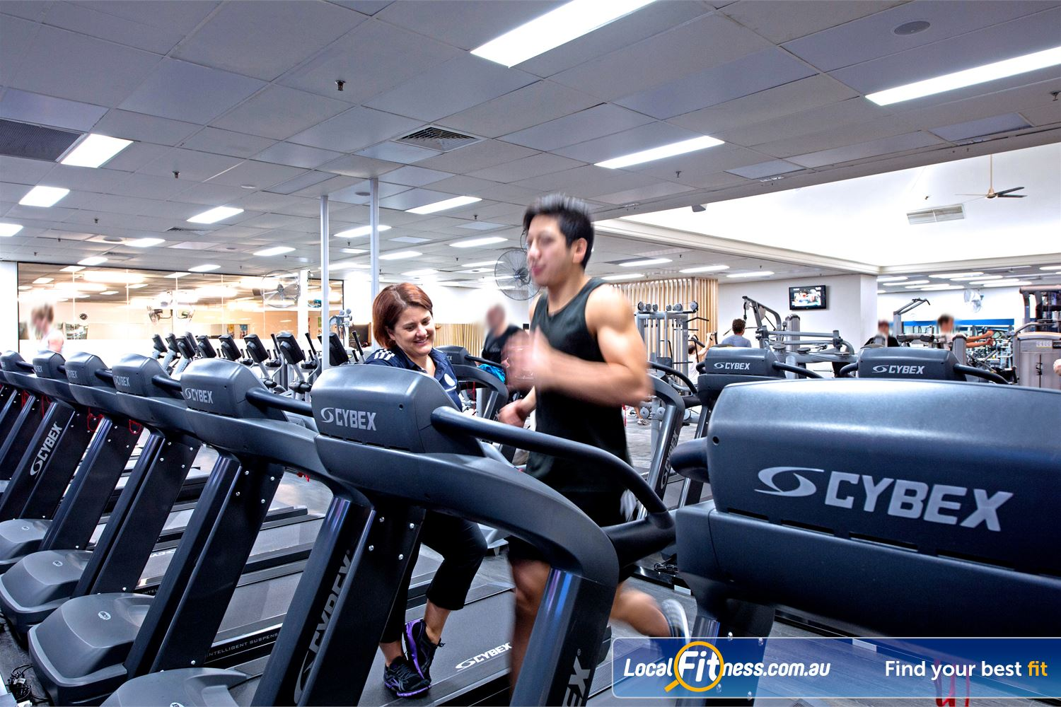 Goodlife Health Clubs Cottesloe Our Cottesloe gym cardio area provides a wide selection.