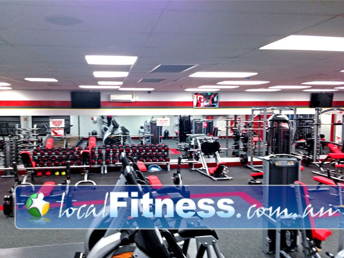 Snap Fitness Hilton Strength training with a fully equipped free-weights area.