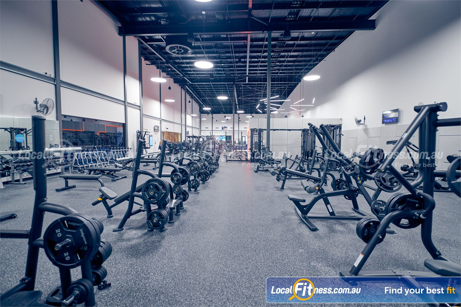 Goodlife Health Clubs Ringwood Heavy-duty plate-loading machines are coming to Goodlife Ringwood gym.