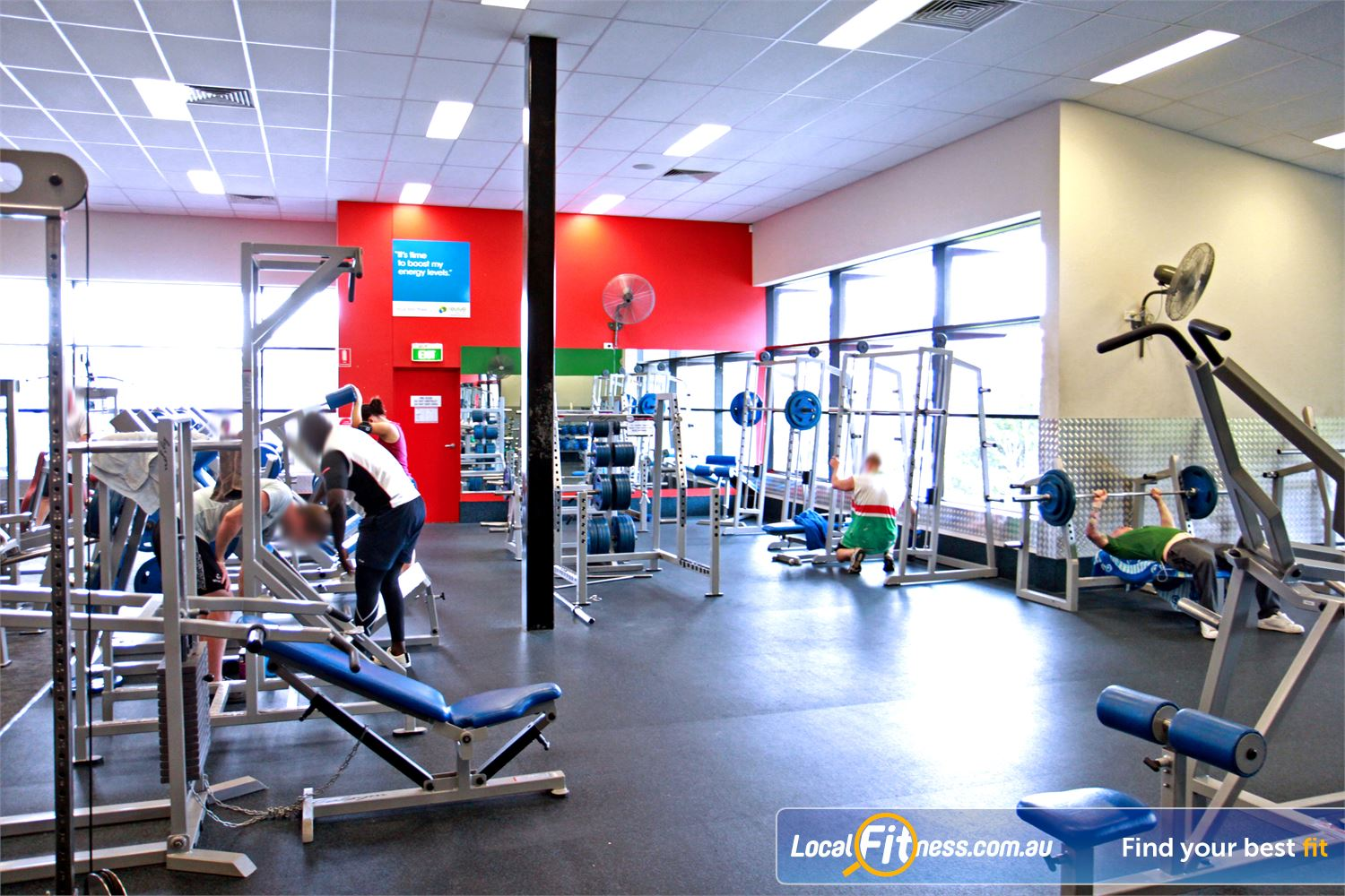Goodlife Health Clubs Holland Park The fully equipped Holland Park free-weights gym area.