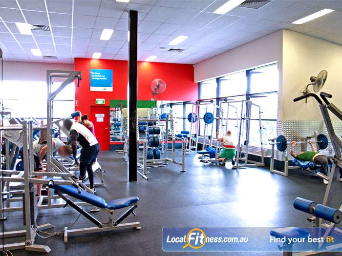 Goodlife Health Clubs Gym Underwood  | The fully equipped Holland Park free-weights gym area.