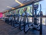 Fernwood Fitness St Kilda Ladies Gym Fitness Rows of cardio machines so you