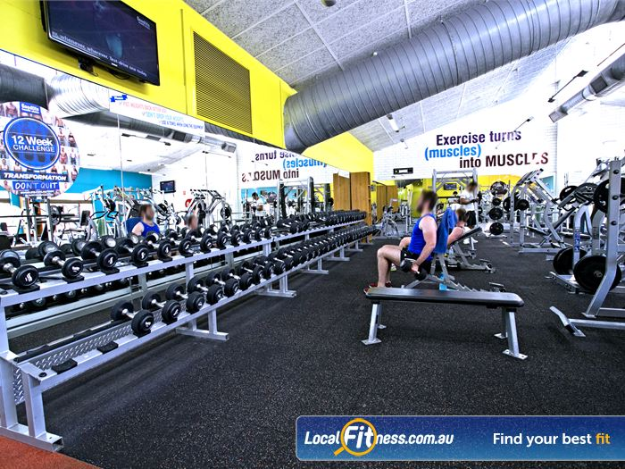 Goodlife Health Clubs Gym Payneham  | An extensive range of Payneham gym free-weight equipment