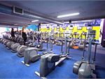 Goodlife Health Clubs Tranmere Gym Fitness Rows and rows of cardio at