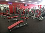 The free-weights area inc. benches, plate-loading machines and