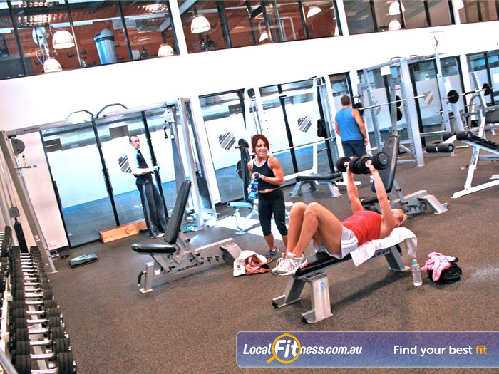 Windy Hill Fitness Centre Free Weights Area Near Essendon North Our Spacious Free Weights Area