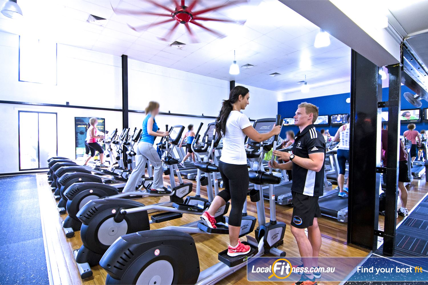 Goodlife Health Clubs Graceville Graceville gym instructors can vary your cardio workout with multiple machines.