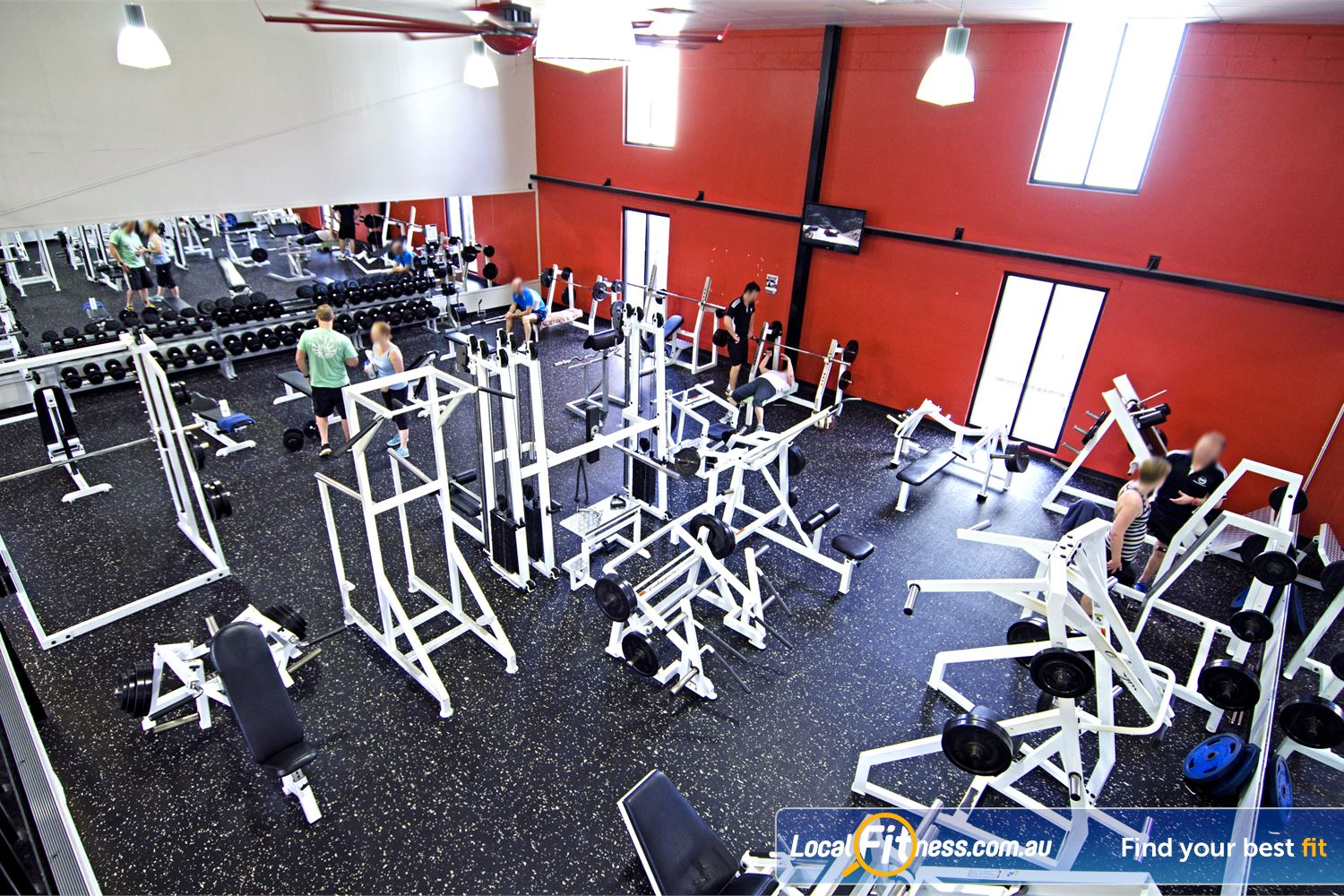 Goodlife Health Clubs Near Yeerongpilly Our Graceville gym includes a comprehensive range of dumbbells and barbells.