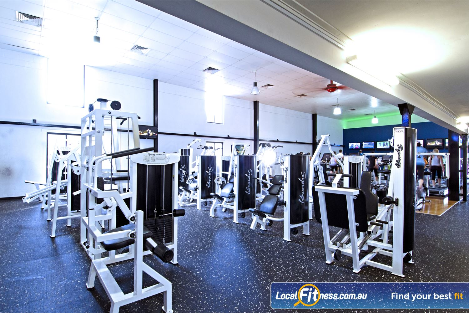 Goodlife Health Clubs Near Tennyson The Graceville gym is fitted with state of the art equipment from Calgym Synergy.