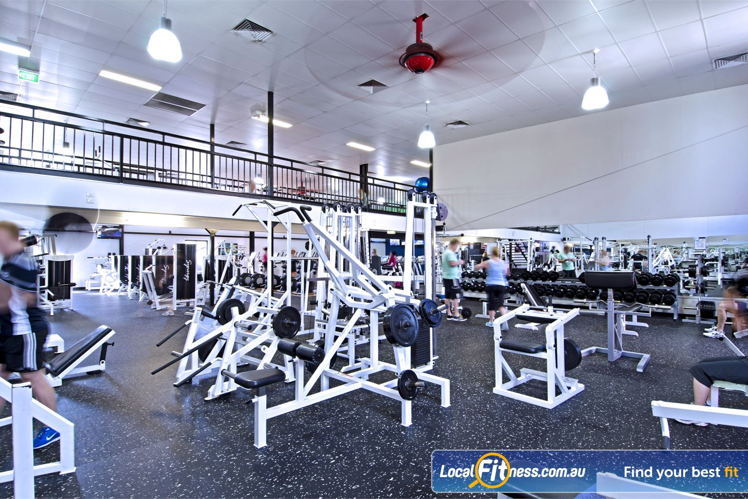 Goodlife Health Clubs Near Sherwood Featuring multiple plate-loading machines.