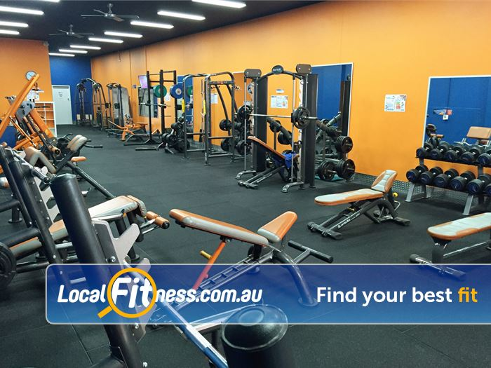 Plus Fitness 247 Sutherland Our comprehensive free-weights area in our Sutherland gym.