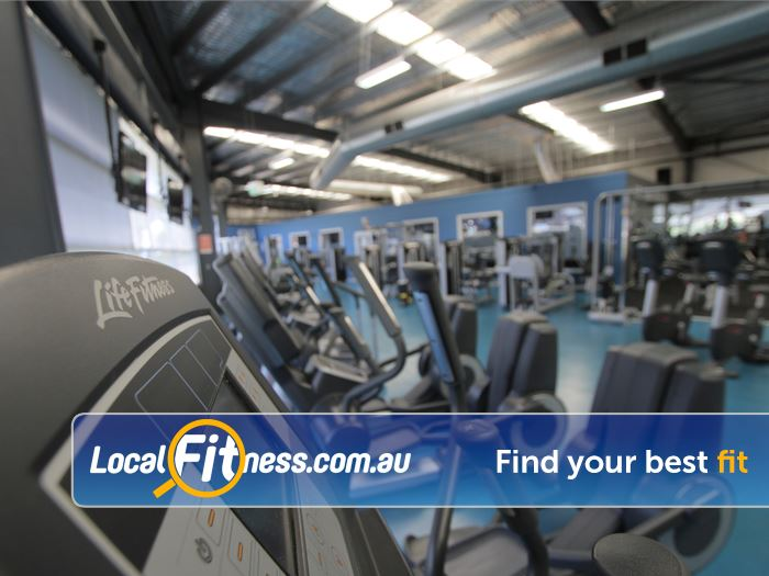 Rising Up Fitness Near Hampton Park Only the best cardio equipment fro Life Fitness.