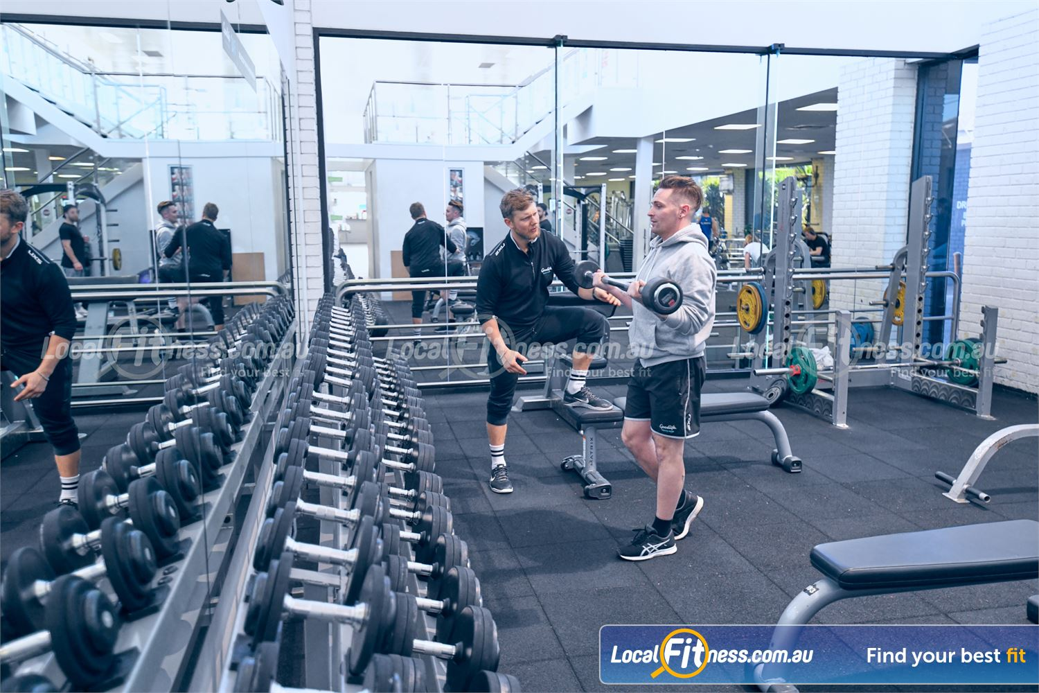 Goodlife Health Clubs Near Ashwood Fully range of free-weights includes dumbbells, barbells, benches and more.