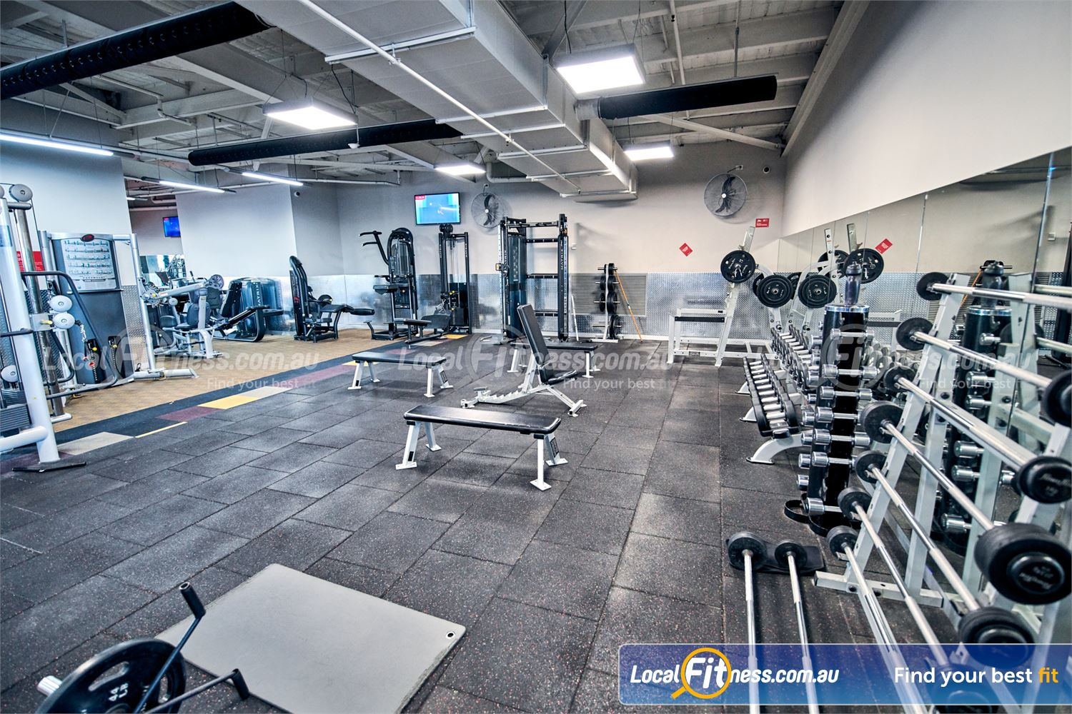 Fitness First Near Mont Albert North Our Doncaster gym includes a fully equipped free-weights area.