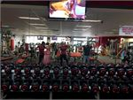 Snap Fitness Coogee 24 Hour Gym Fitness State of the art strength