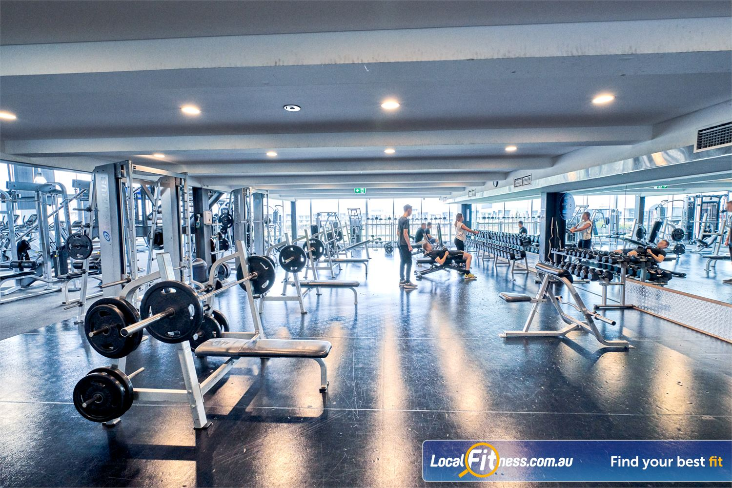 Goodlife Health Clubs Waverley Park Mulgrave Fully equipped free-weights area at Goodlife Waverley Park.