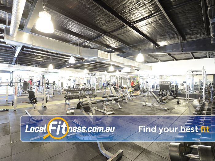 Star Fitness Gym Hampton  | Welcome to Star Fitness your no. 1 Moorabbin