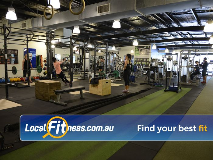 Star Fitness Gym Hampton  | Our Moorabbin gym is fully equipped for strength