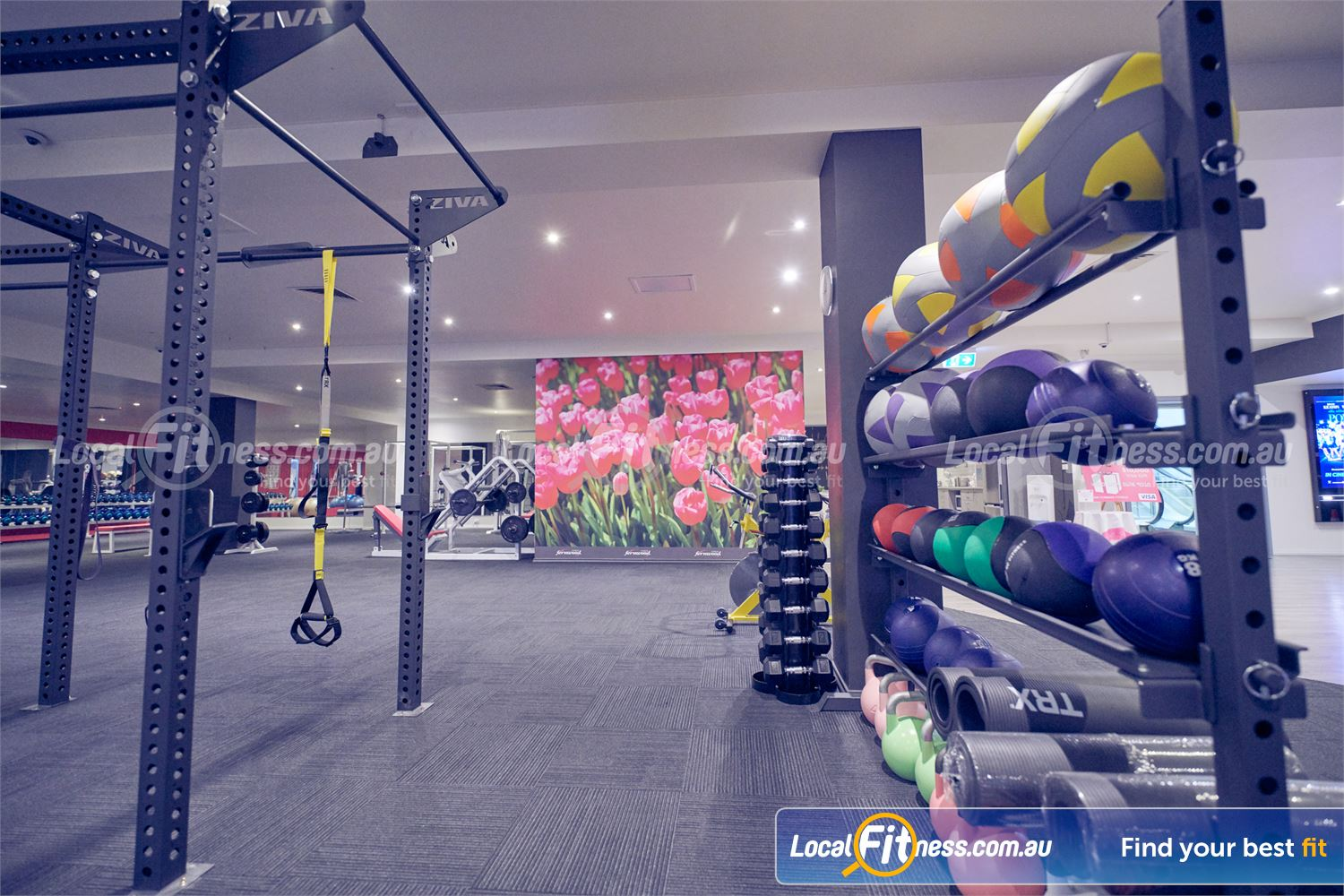 Fernwood Fitness Bulleen Our functional area includes kettlebells, TRX, wall balls and more.