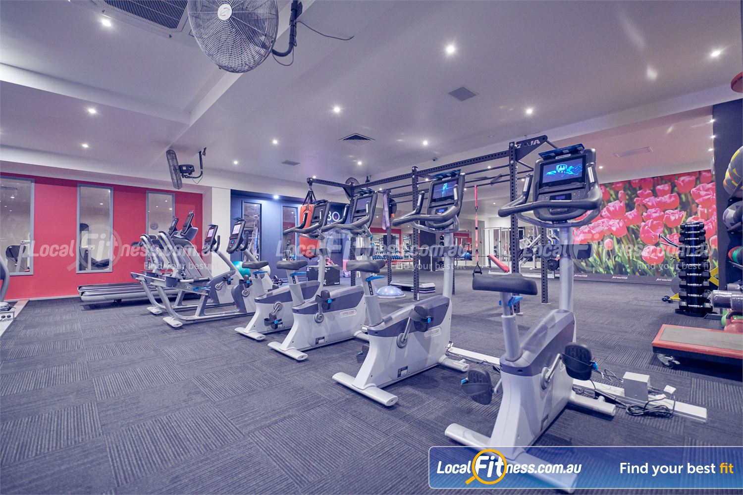 Fernwood Fitness Near Templestowe Lower Rows and rows of cardio machines so you don't have to wait.