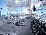 Goodlife Health Clubs Thornbury Gym Fitness Fully equipped free-weights