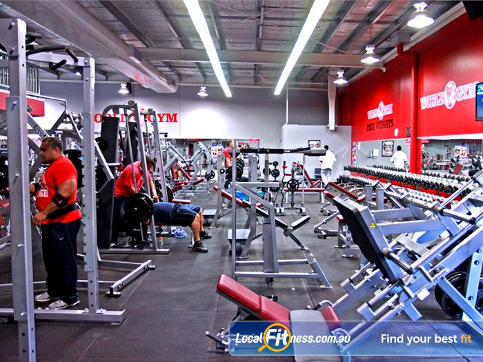 World Gym Gym Ashmore  | Welcome to the state of the art World
