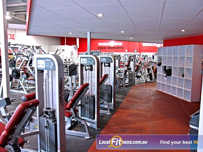 World Gym Gym Southport  | A full range of Hammer Strength and Life