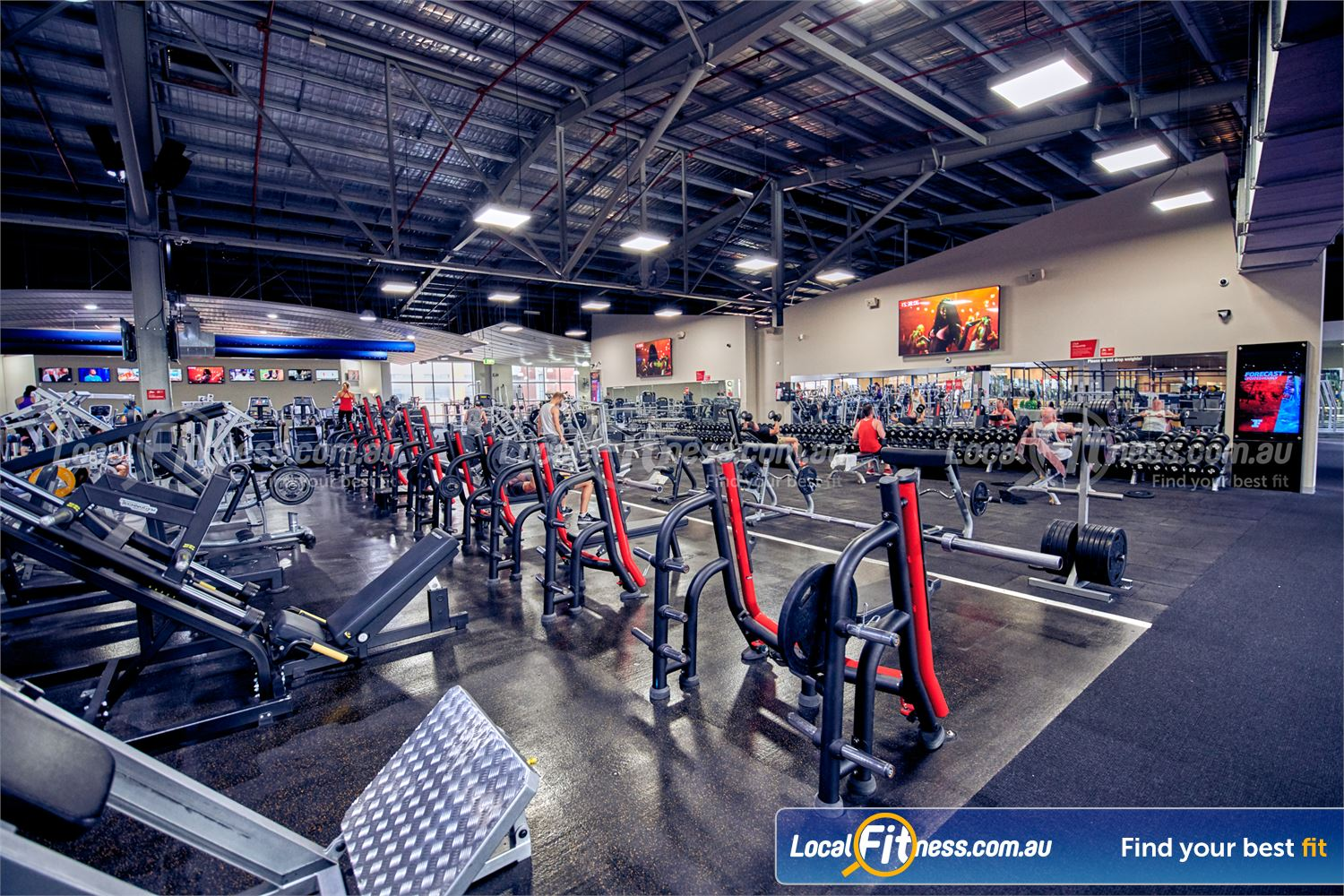 Fitness First Platinum Near Richmond North Multiple benches, leg press in our free weights training area.