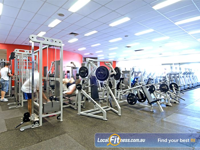 Goodlife Health Clubs Gym Cleveland  | Our Cleveland gym is a spacious Bayside retreat.