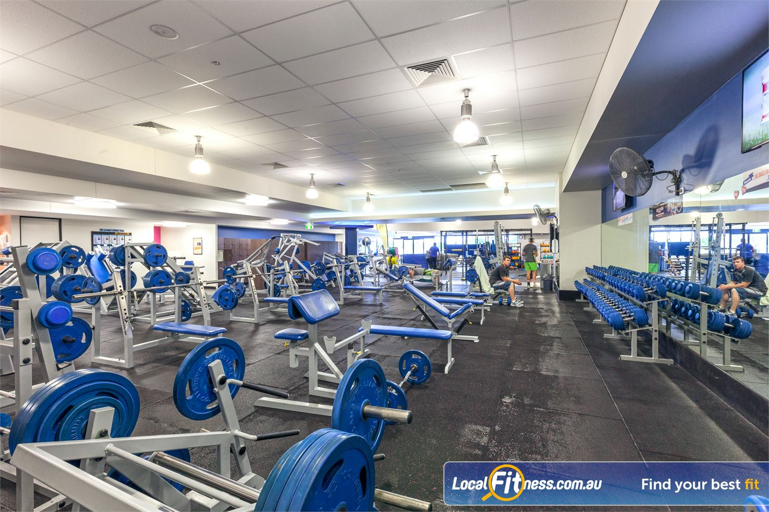 Goodlife Health Clubs Near Kings Beach Wide selection of free-weights.