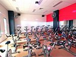 Fernwood Fitness Bruce Ladies Gym Fitness Enjoy the dynamic disco