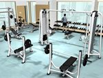 Re-Creation Health Clubs Werribee Gym Fitness Huge range of free weights in