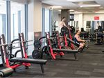 Fitness First Elizabeth Plaza North Sydney Gym Fitness Multiple bench presses, power