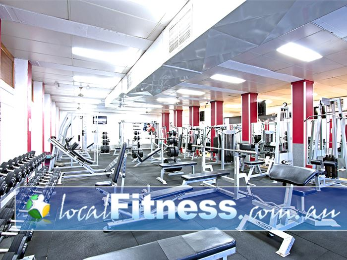 PCYC Gym Collingwood Park  | Heavy duty benches, bars and plate loading machines.