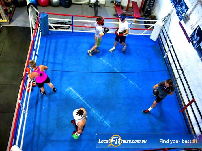 Mischa's Boxing Central Gym Footscray  | Our Footscray boxing gym includes a full size