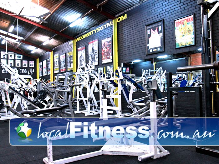 Doherty's Gym Brunswick Bringing you the best chest equipment from around the world.