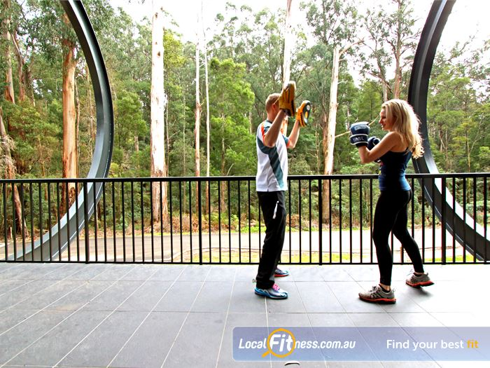 Monbulk Aquatic Centre Gym Kilsyth  | Our Monbulk gym provides unique charming forest views.