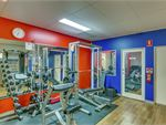 Ontic Health & Fitness Alexandra Hills Gym Fitness Our Wellington Point gym