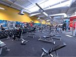 Goodlife Health Clubs Essendon North Gym Fitness An extensive range of dumbbell