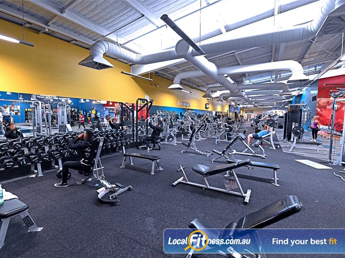 Goodlife Health Clubs Gym Fawkner  | An extensive range of dumbbell and barbell equipment