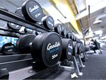 Goodlife Health Clubs Essendon North Gym Fitness Our Essendon gym includes a