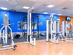 Plus Fitness 24/7 Campbelltown Gym Fitness Our Campbelltown gym provides