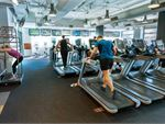 Fitness First Maroubra Gym Fitness The dedicated cardio theatre at