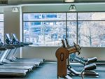 Fitness First Maroubra Gym Fitness Bright and naturally-lit
