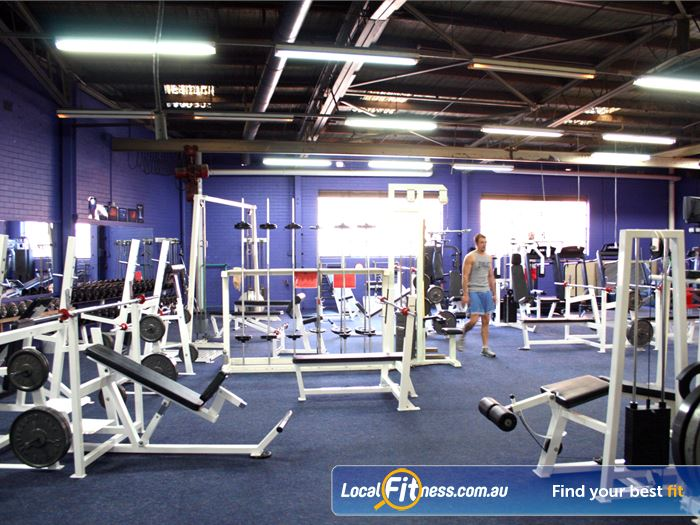 FITafex Gymnasium Gym Airport West  | We have a fully equipped weights area for