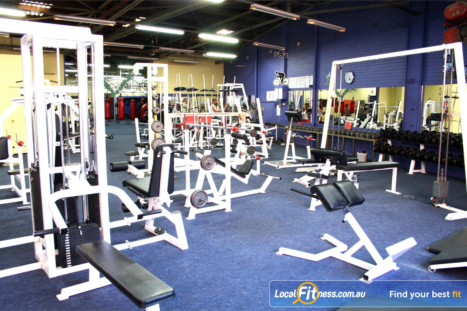 FITafex Gymnasium Near Essendon North The Essendon gym includes a full range of easy to use pin-loading equipment.
