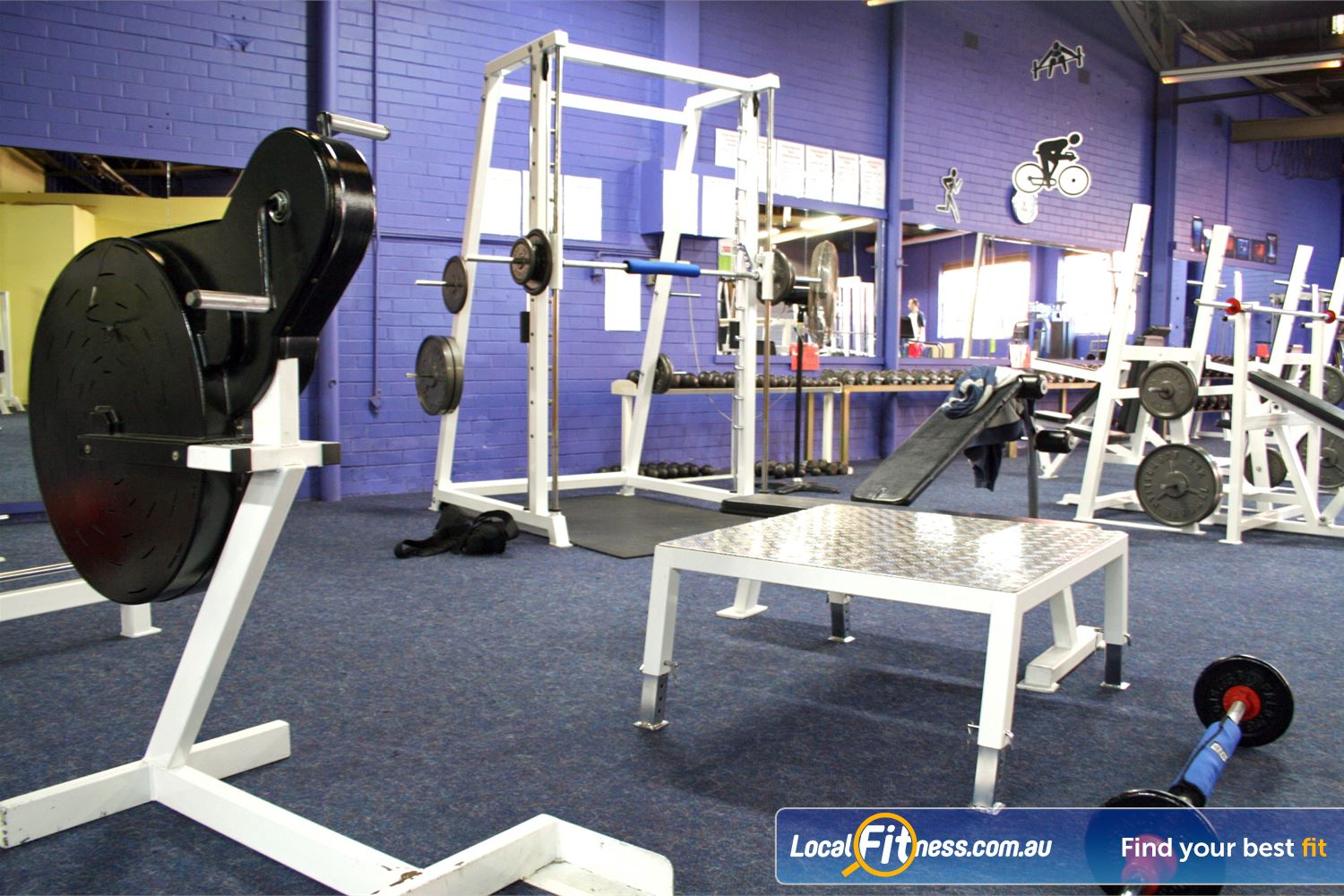 FITafex Gymnasium Near Strathmore Build those arms on our military style grinder.