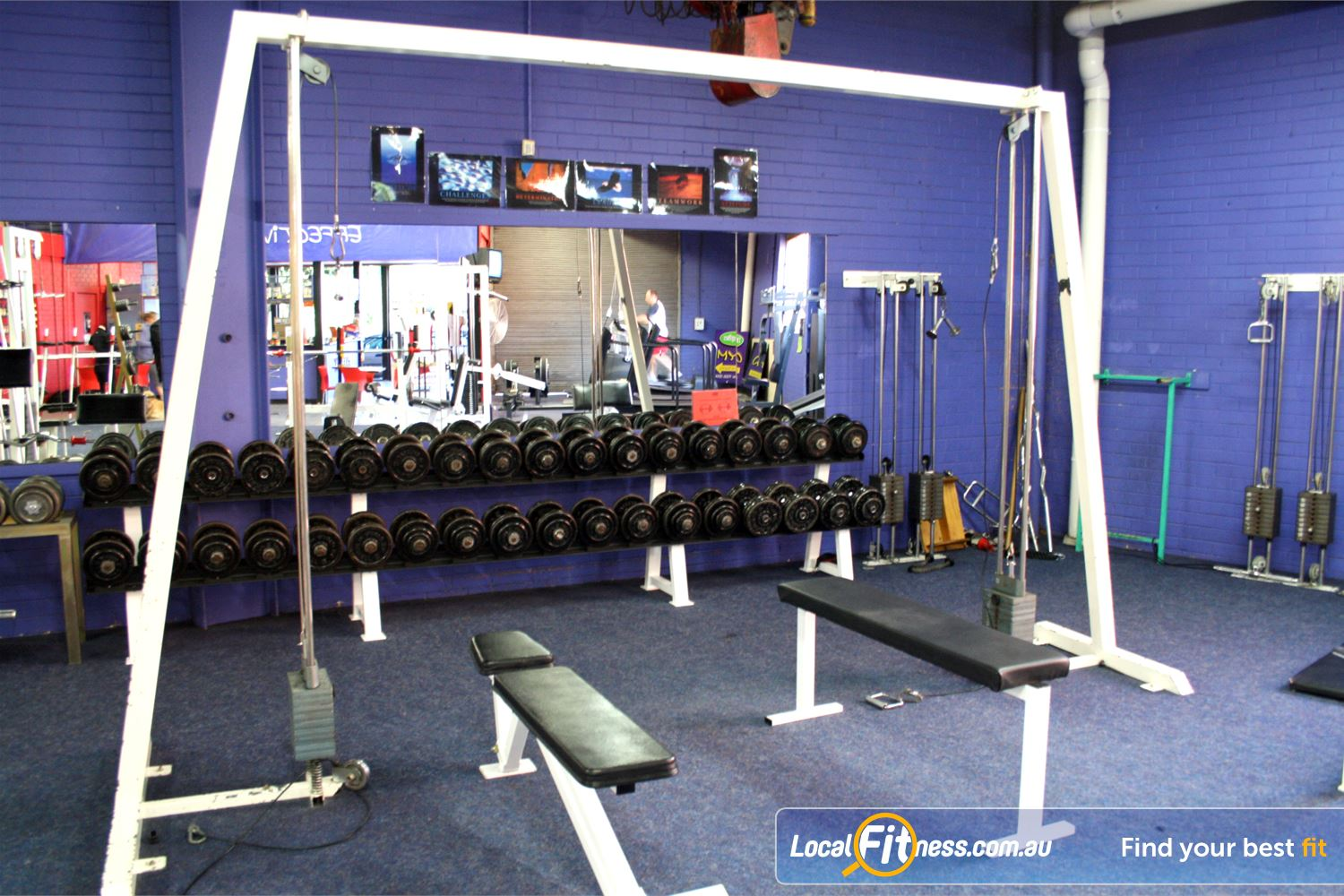 FITafex Gymnasium Near Niddrie Our popular cable cross-over machines, benches and dumbbells sets.