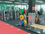 Fitness First Platinum Castle Cove Gym Fitness Olympic plates, deadlift